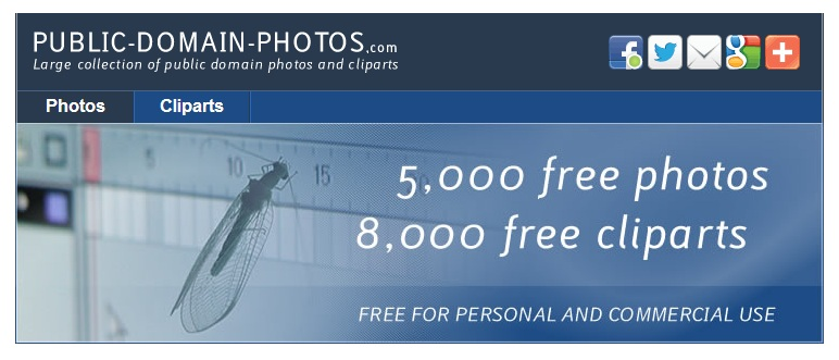 free photos public domain images,